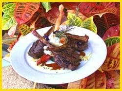 Grilled Asian Lamb Chops